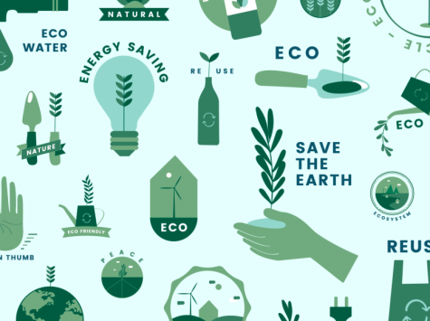 An Eco-Friendly Lifestyle is Within Reach